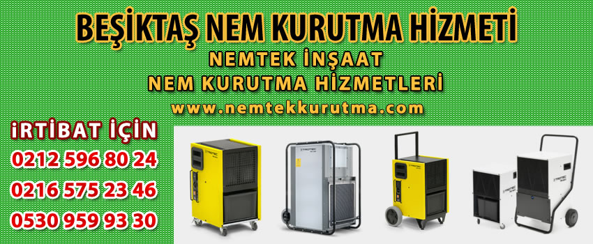 Beşiktaş Nem Kurutma Hizmeti