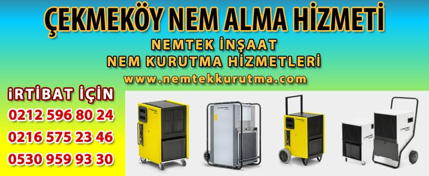 Çekmeköy Nem Alma Hizmeti