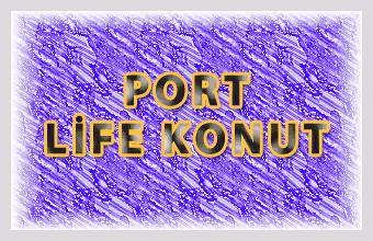 Port Life Konut